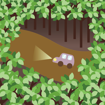 Image of a car running in the forest