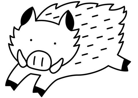 Wild Boar 1-1c
