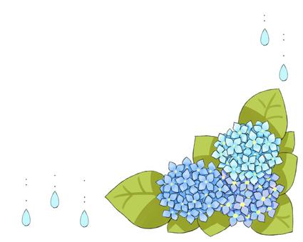 Blue hydrangea frame