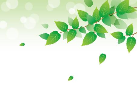 Glitter green back image material