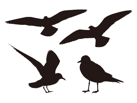 Bird's silhouette (black)