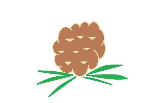 Pine cones 1