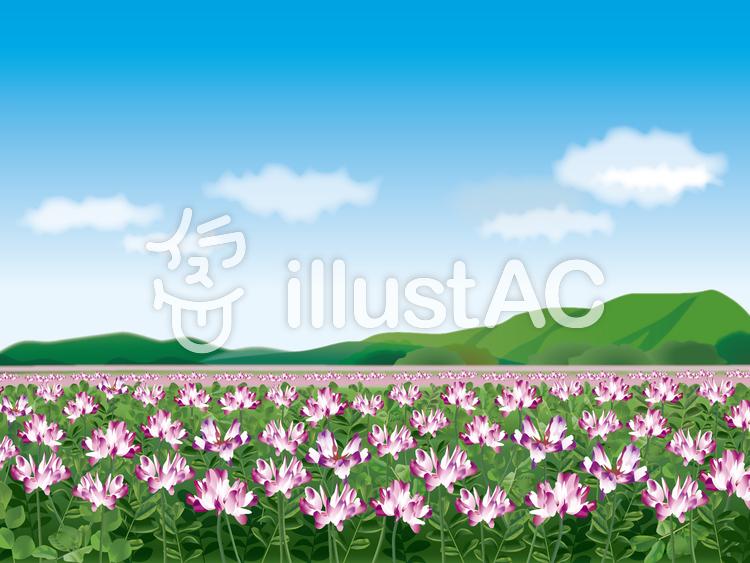 レンゲ畑のイラスト