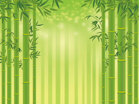Bamboo with bamboo leaves _ Bamboo forest background 02