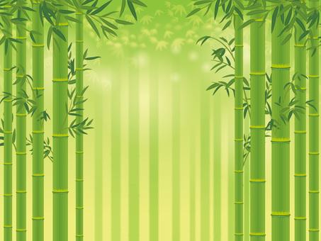 대나무 잎이 붙은 대나무 _ 죽림 배경 02
