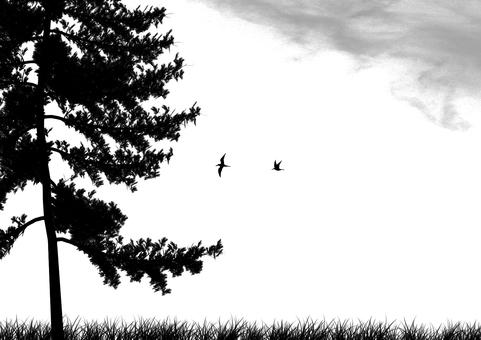 잔디와 나무 (흑백)