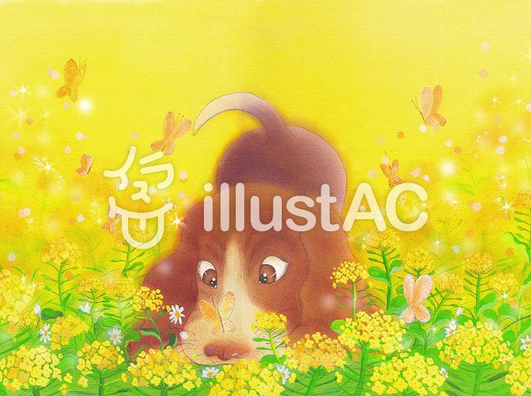 犬菜の花畑イラスト No 932412無料イラストならイラストac
