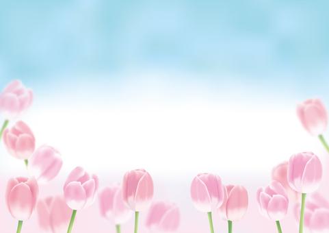Tulip _ side
