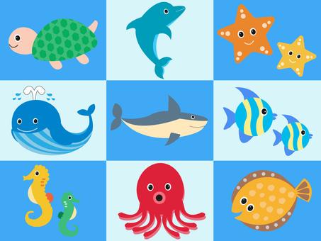 57.海の生き物