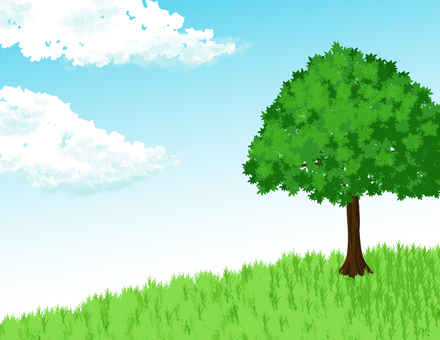 Tree _ Grassland _ sky