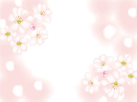 Spring, Tint block, Sakura. Flower