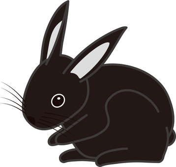 Black Rabbit / Rabbit