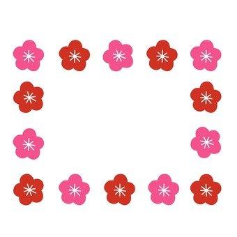框架1的花