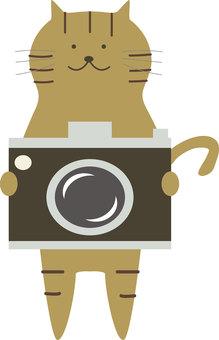 Animals 030 (camera and cat)