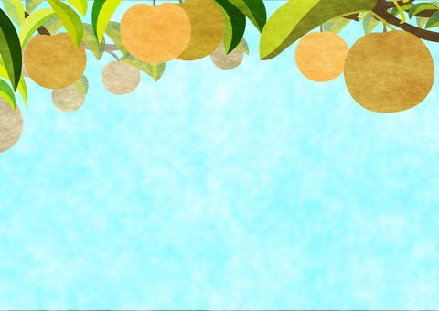梨の木の背景