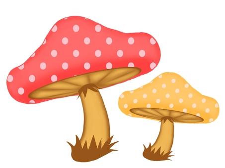 Mushrooms ①