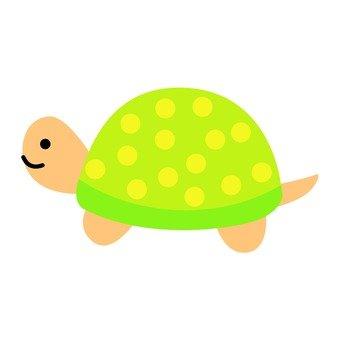 황록색의 거북이