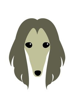 Dog 49