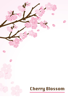 櫻桃背景框架(垂直版)