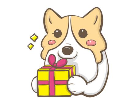 Corgi with a present