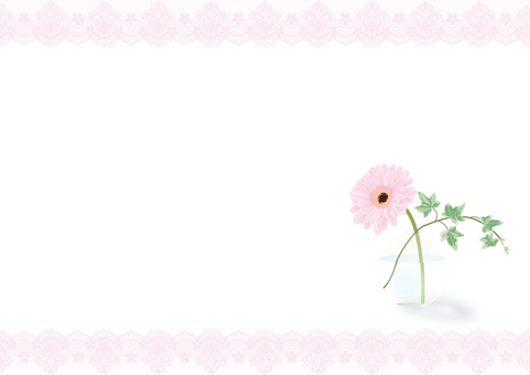 Pink lace and gerbera