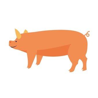 Livestock 008