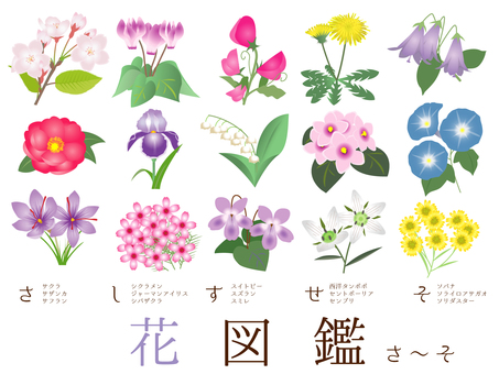 Flower illustration book