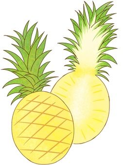 Cross section of pineapple