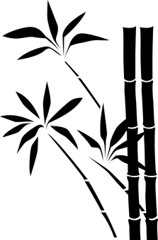 대나무 D