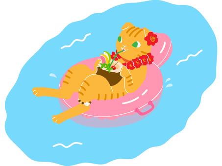 Cat-floating wheel 02