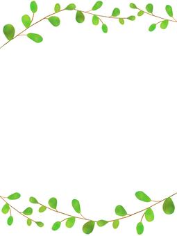 Eucalyptus plant frame 2
