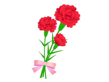 Carnation bouquet 2-1