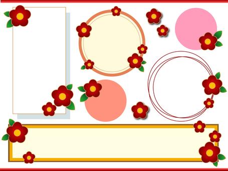 Camellia 13
