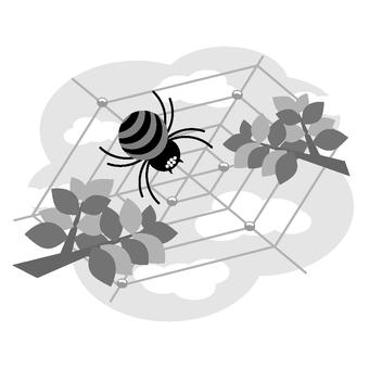 Spider (monochrome)