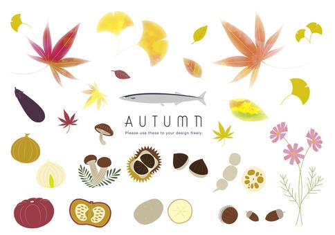 Autumn plants and seasonal ingredients