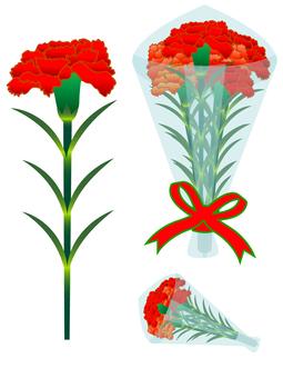 Carnation (cs 2 ↓)