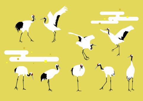 Cranberry crane