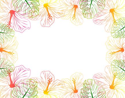 Hibiscus - No.4