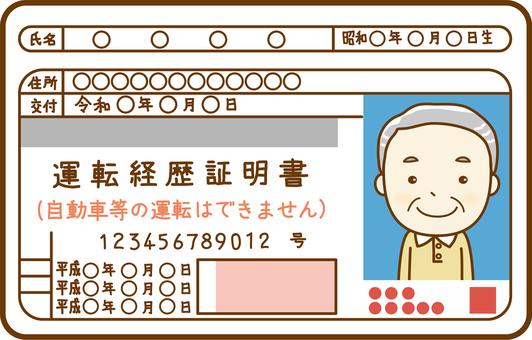 Elderly driver 04