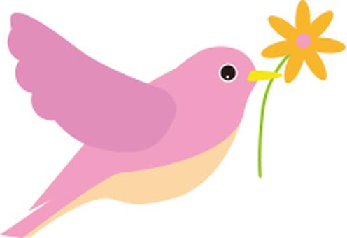 핑크 새와 꽃