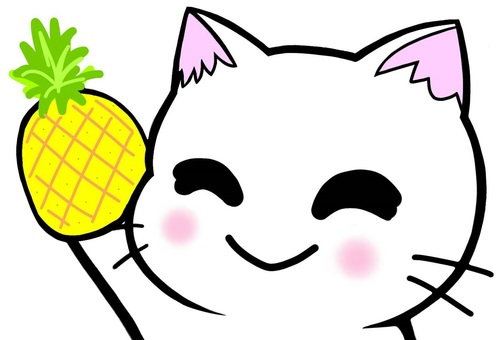 Cat with pineapple