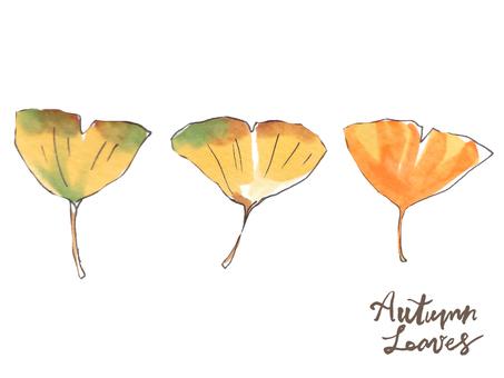 가을 나뭇잎 04