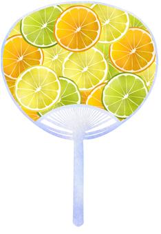 Fan, fruit round slice