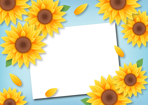 Sunflower summer illustration frame