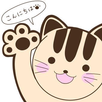 Cat _ Hello