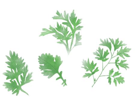 Horn leaves
