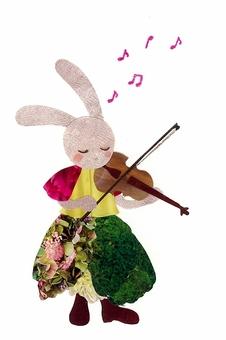 동물과 악기 시리즈 ~ 토끼와 바이올린 ~