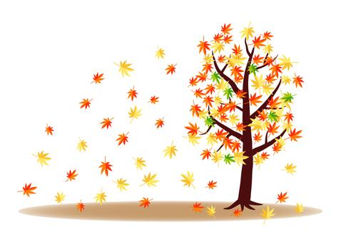Seasonal change (autumn leaves)