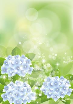 Green & hydrangea 26