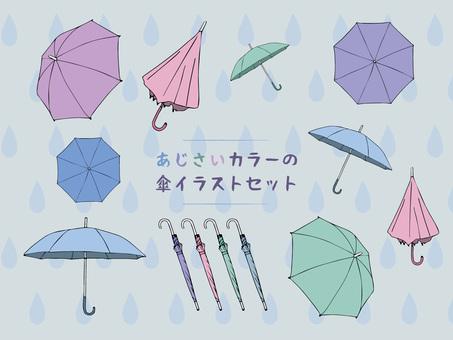 Hydrangea color umbrella illustration
